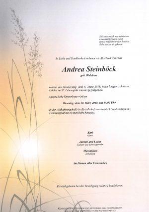 Portrait von Steinböck Andrea