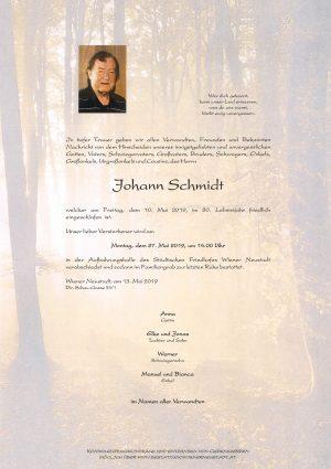 Portrait von Johann Schmidt