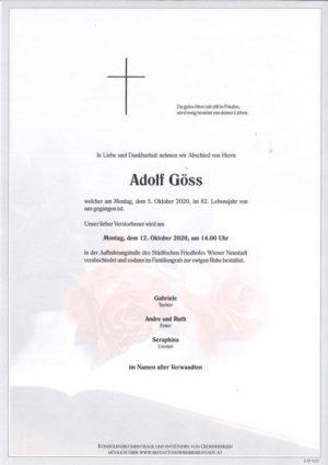 Portrait von Adolf Göss