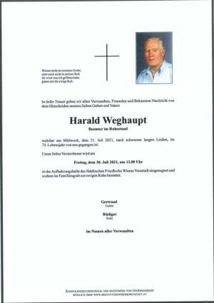 Portrait von Harald Weghaupt