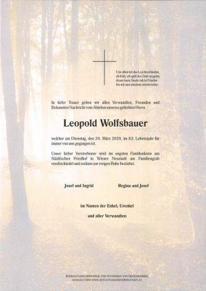 Portrait von Leopold Wolfsbauer